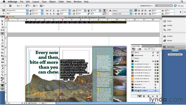 Using mixed inks and registration: InDesign CS5: Print Production Guidelines