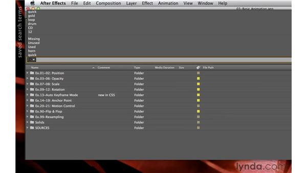 Searching and sorting: After Effects CS5.5 New Creative Techniques