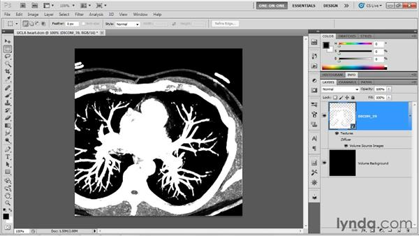 Making a 3D volume from DICOM layers: Photoshop CS5 Extended One-on-One: 3D Objects