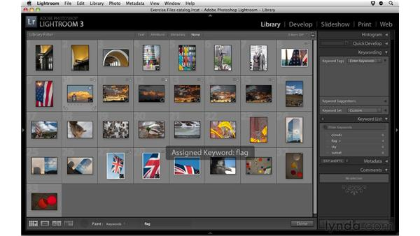 Keywording photos: Up and Running with Lightroom 3
