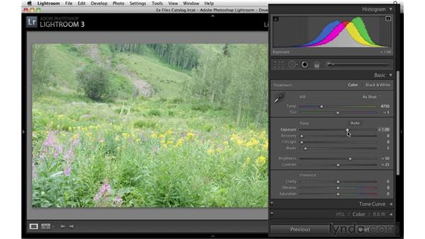 Adjusting tone and contrast: Up and Running with Lightroom 3