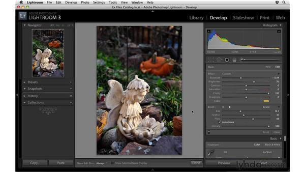 Using the Adjustment Brush: Up and Running with Lightroom 3