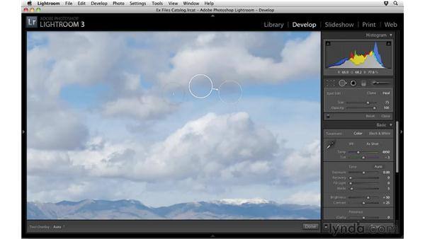 Removing spots from multiple photos: Up and Running with Lightroom 3