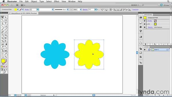 Welcome: Illustrator Insider Training: Seeing Through Transparency
