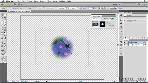 Creating an opacity mask: Illustrator Insider Training: Seeing Through Transparency