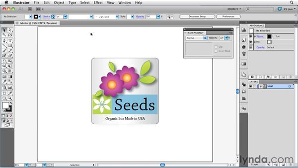 Copying graphics from Illustrator: Illustrator Insider Training: Seeing Through Transparency