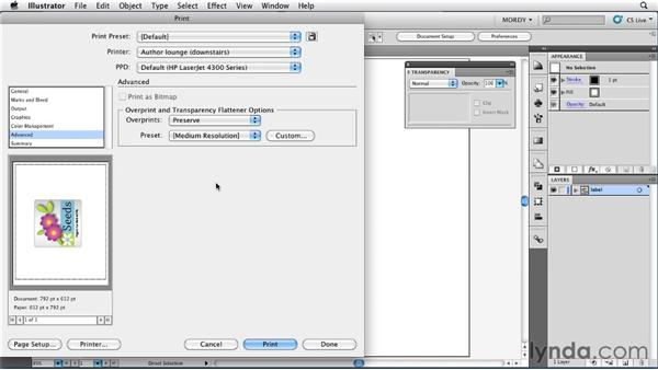 Printing files from Illustrator: Illustrator Insider Training: Seeing Through Transparency