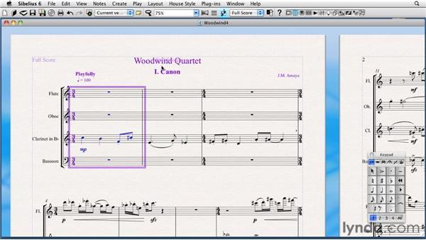System selection: Sibelius 6 Essential Training