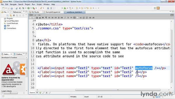 Designating a default active form field using the autofocus attribute: HTML5: Web Forms in Depth