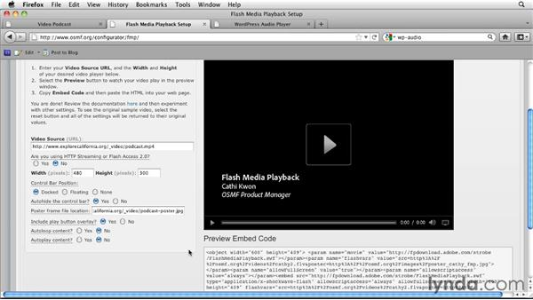 Falling back to Flash: HTML5: Video and Audio in Depth
