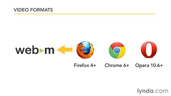Understanding HTML5 video formats: HTML5: Video and Audio in Depth