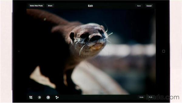 : iPad Tips and Tricks (2010)