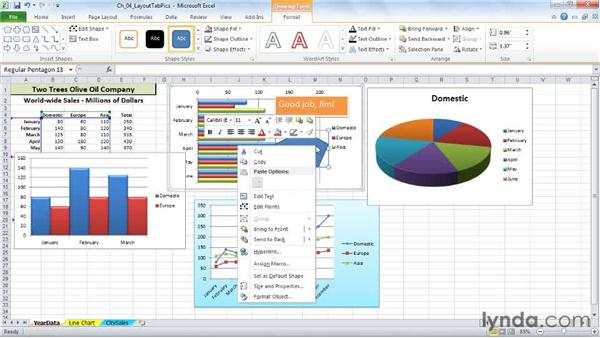 Adding floating text and text boxes: Excel 2010: Charts in Depth
