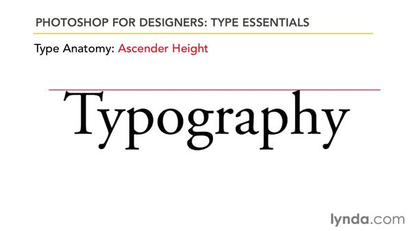 Exploring type anatomy and terminology: Photoshop for Designers: Type Essentials