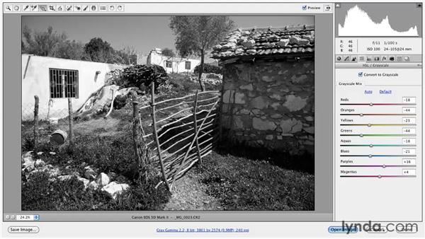 Converting to black and white in Camera Raw: Foundations of Photography: Black and White