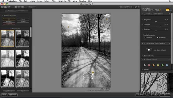 Using Nik Software's Silver Efex Pro 2 plug-in: Foundations of Photography: Black and White