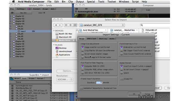 Importing video, audio, and graphics: Migrating from Final Cut Pro 7 to Avid Media Composer 5.5