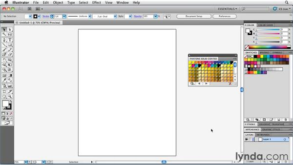 Accessing color libraries: Illustrator Insider Training: Coloring Artwork