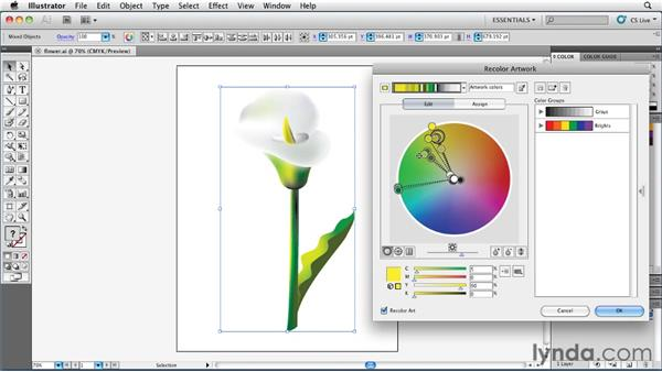 Reducing colors intelligently and precisely: Illustrator Insider Training: Coloring Artwork