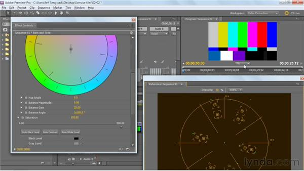 Using the Vectorscope: Premiere Pro: Color Correction and Enhancement