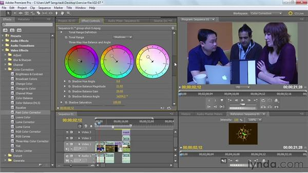 Reviewing recommended color correction effects: Premiere Pro: Color Correction and Enhancement