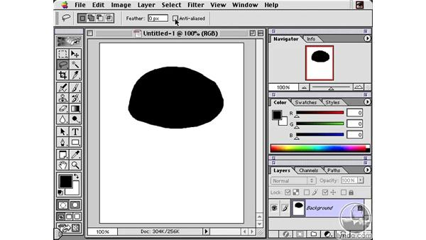 Lasso Tool: Learning Photoshop 6
