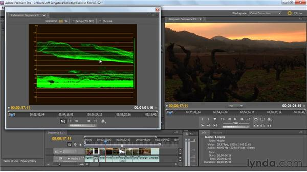 Analyzing clips for tonality issues: Premiere Pro: Color Correction and Enhancement