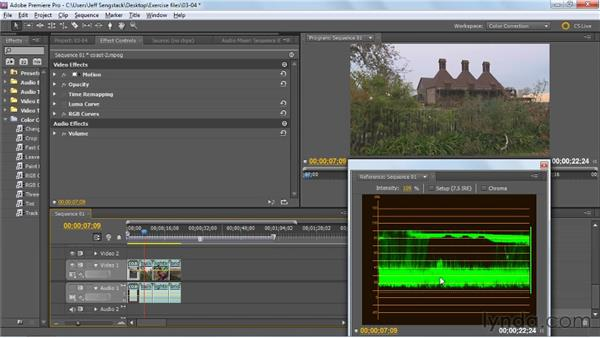 Adjusting tonality using RGB Curves: Premiere Pro: Color Correction and Enhancement
