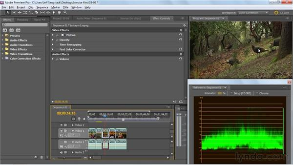 Making some specialized tonality edits: Premiere Pro: Color Correction and Enhancement