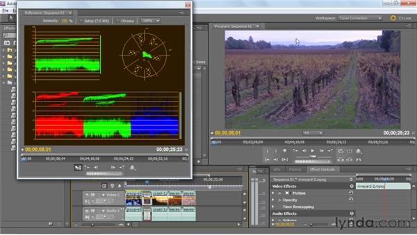 Analyzing clips for color issues: Premiere Pro: Color Correction and Enhancement