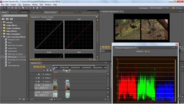 Matching color in multiple clips: Premiere Pro: Color Correction and Enhancement