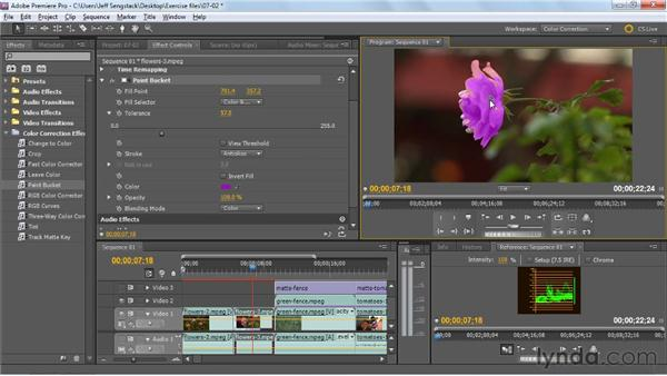 Changing a single color: Three approaches: Premiere Pro: Color Correction and Enhancement