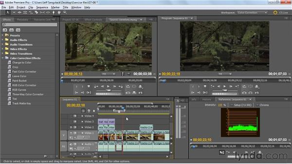 Creating film-like looks: Premiere Pro: Color Correction and Enhancement