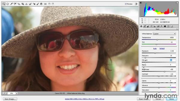 Using Exposure controls: Up and Running with Photoshop for Photography