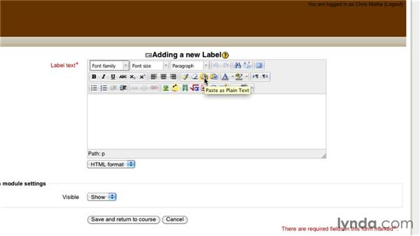HTML Editor overview: Moodle 2.1 Essential Training for Teachers