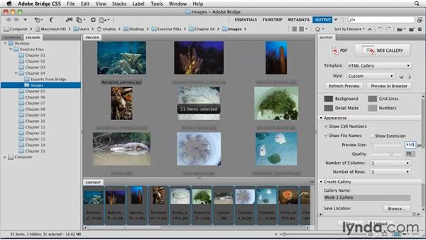 Preparing images: Moodle 2.1 Essential Training for Teachers