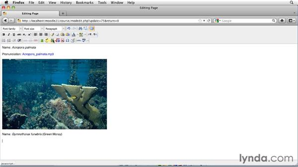 Posting QuickTime video as .mov files: Moodle 2.1 Essential Training for Teachers