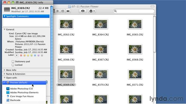 Viewing photos on a Mac: Organizing and Archiving Digital Photos