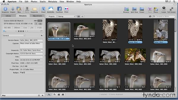 Understanding digital asset managers: Organizing and Archiving Digital Photos
