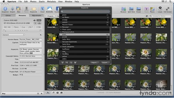 : Organizing and Archiving Digital Photos