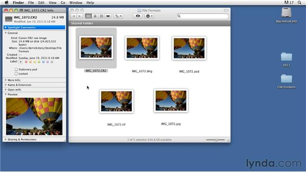 Choosing file formats: Organizing and Archiving Digital Photos