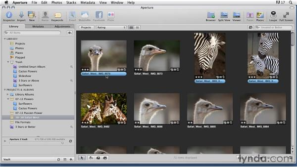 Deciding photos to archive : Organizing and Archiving Digital Photos