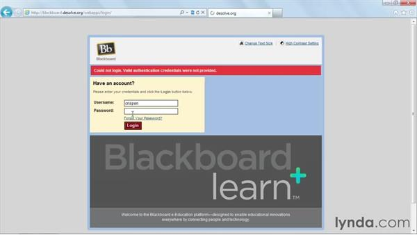 : Blackboard 9.x Essential Training for Students