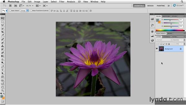 Preparing an image for a stained glass effect: Photoshop for Designers: Textures