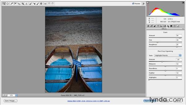 Adding grain to a Camera Raw image: Photoshop for Designers: Textures