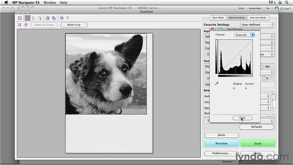 Scanning grayscale photos: Scanning Techniques for Business and Home