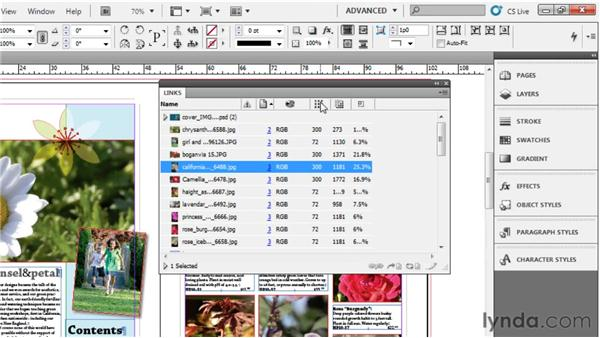004 Customizing the Links panel: InDesign Secrets