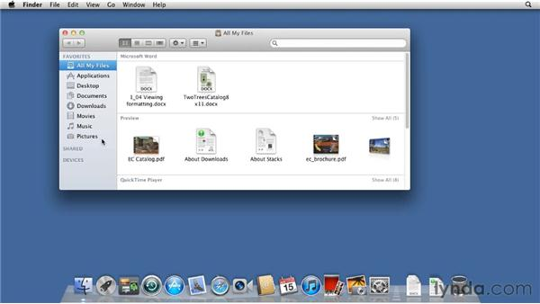 Personalizing the interface: Mac OS X Lion Essential Training