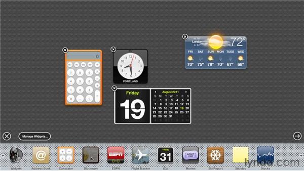 Understanding Dashboard widgets: Mac OS X Lion Essential Training
