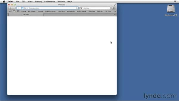 Configuring privacy settings: Mac OS X Lion Essential Training
